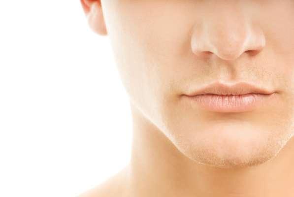 A boca é formada pelos dentes, língua, gengiva, palato céu da boca , bochecha e lábios. Esse grupo é responsável pelo início da digestão. Os dentes cortam os alimentos em partes menores. A saliva lubrifica e dilui a comida, além de iniciar a digestão de carboidratos complexos. A língua é responsável por empurrar os alimentos para a faringe.