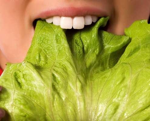 A dieta vegetariana não traz prejuízos à saúde