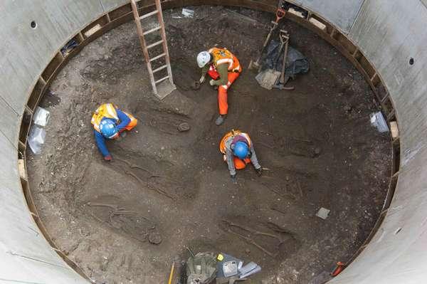 Em um dos maiores anúncios do mês de março, arqueólogos confirmaram a descoberta de um cemitério perdido durante escavações para a construção de um projeto bilionário de expansão das linhas ferroviárias em Londres. A descoberta vai ajudar os especialistas a esclarecer a morte de milhares de pessoas pela peste negra há mais de 650 anos