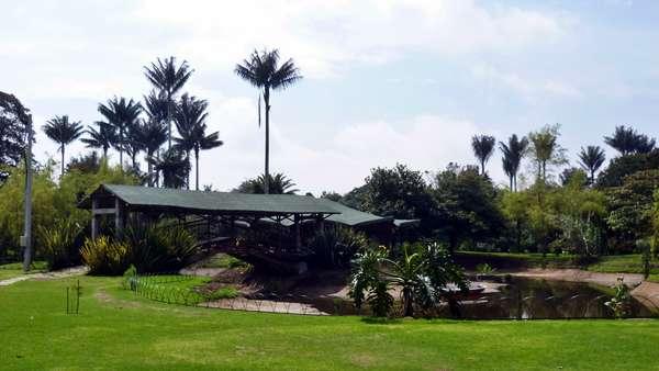 Parque en bogot ofrece eventos al pie de la naturaleza for Actividades jardin botanico bogota