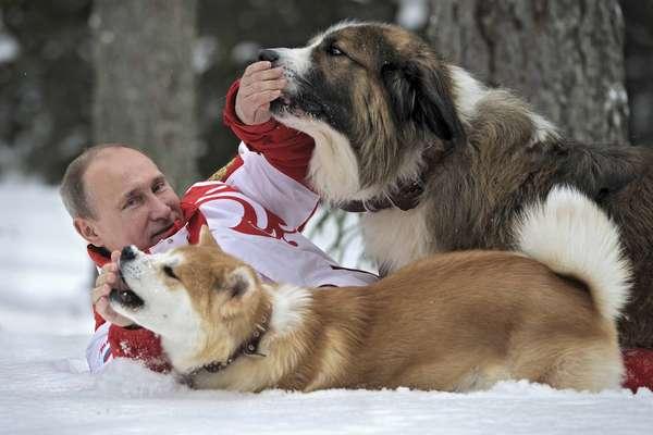 O presidente da Rússia, Vladimir Putin, brinca com seus cães de estimação durante caminhada em parque coberto pela nevena região de Moscou. O forte líder russo, frequentemente acusado de autoritarismo e por suprimir a oposição do país, costuma ser fotografado em momentos de lazer na natureza e com animais