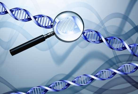 Cronolog a del descubrimiento y avances del genoma humano for En 2003 se completo la secuenciacion del humano