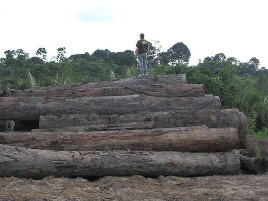 Em Uruará (PA), o Ibama combate principalmente a exploração irregular de madeira. O material apreendido que aparece na imagem foi doado. A madeira doada pelo Ibama deverá ser aplicada em ações sociais, conforme os projetos apresentados pelas entidades ao instituto