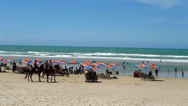 Praia do FuturoCom 8 km de extensão, a Praia do Futuro é a mais frequentada da capital cearense. O local tem diversas barracas com cadeiras, drinques epetiscos locais, em particular os deliciosos caranguejos em quiosques como o famoso Crocobeach.No leste de Fortaleza, a praia tem atrações para todas as idades, e oferece um lindo visual com dunas frente ao oceano