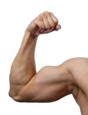 Para malhar o braço, o professor de musculação Bruno Bianchi apresenta nove exercícios para bíceps, tríceps e deltoide, que devem ser realizados de duas a três vezes por semana, com um a dois dias de repouso para os músculos. Os possíveis resultados (diminuição do percentual de gordura e ganho de massa muscular) são notados a partir de 8 a 12 semanas