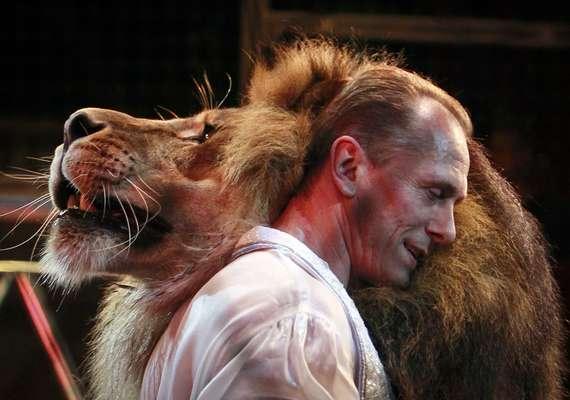 O domador Oleksiy Pinko dança com um dos leões treinados em circo de Kiev, capital da Ucrânia. Pinko treinou sete grandes felinos para participar de um espetáculo circense que conta com uma apresentação de dança. De acordo com o jornal britânico The Sun, o ponto alto do show é quando ele coloca a cabeça dentro da boca de um dos animais, atraindo grandes aplausos do público