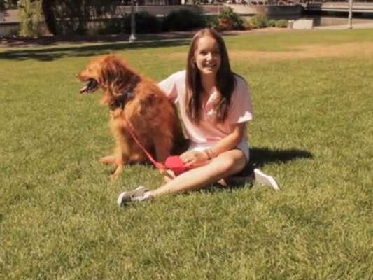 Brooke Martin, de 13 anos, é a responsável pela criação do dispositivo para conectar donos e cães à distância