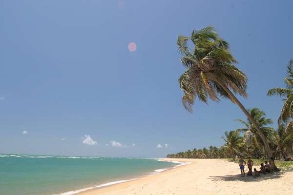 Praia do Gunga, a 40 km de Maceió: um dos melhores destinos turísticos de Alagoas