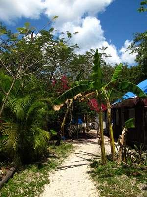 Calm Cabins en Tulúm, Quintana Roo. En este paradisiaco hotel situado en la reserva ecológica de Tulúm, en Quintana Roo, podrás deleitarte con exquisitos platillos elaborados a base de frutos y vegetales tropicales.