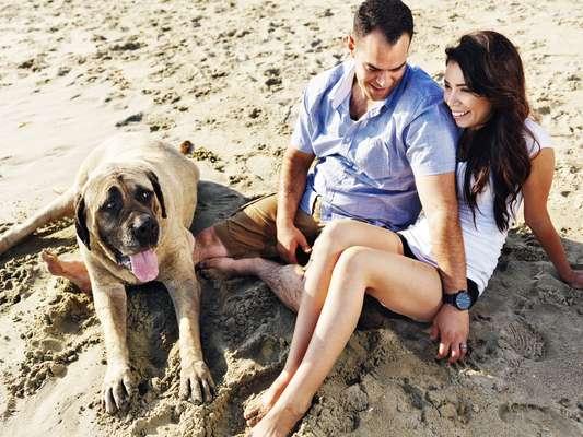 Comum durante a estação mais quente do ano, ida dos cachorros à praia pode comprometer a saúde dos próprios pets e também dos banhistas