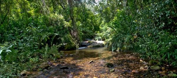 Uma das unidades contempladas é o Parque Estadual dos Três Picos, que ganhará trilhas sinalizadas em português e inglês e várias melhorias de infraestrutura para atrair visitantes e turistas durante a Copa do Mundo