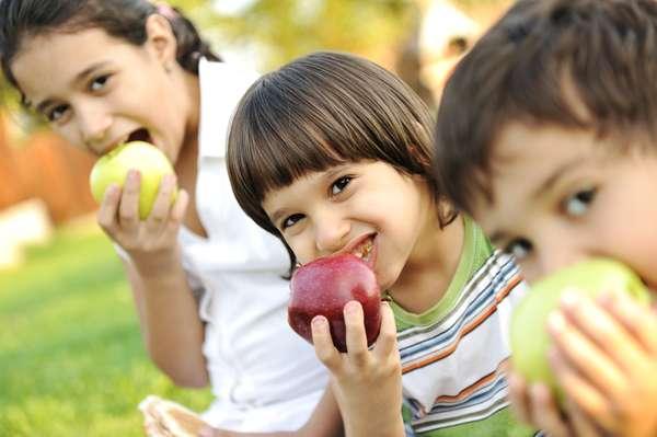 O lanche deve combinar uma fruta com casca, como a maçã, ou outra que tenha uma casca que saia com facilidade