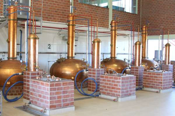 Com duas fábricas, o Grupo Salinas é hoje capaz de produzir cerca de 6 mil litros de pinga por dia
