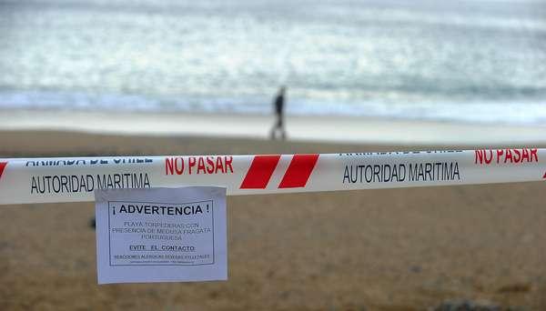 Almería y Murcia prohiben bañarse en sus playas por la aparición de susfótomos de ciclobita producto de los desechos nuecleares de la central de Tabernas