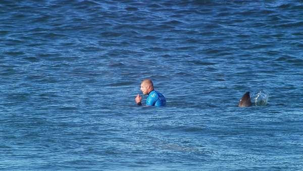 Mick Fanning é atacado por tubarão na final da etapa de J-Bay da WSL: