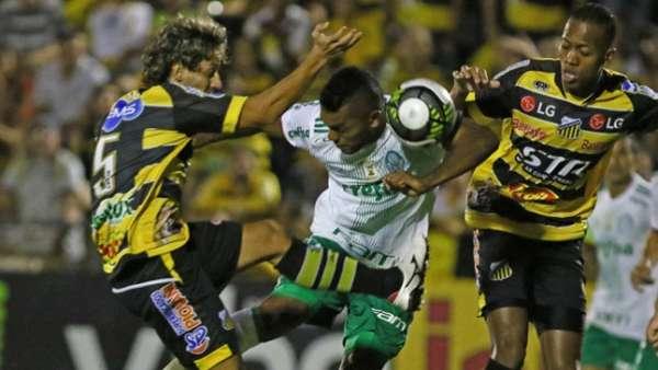 Palmeiras venceu o Novorizontino