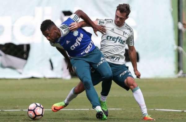 Treino do Palmeiras neste domingo