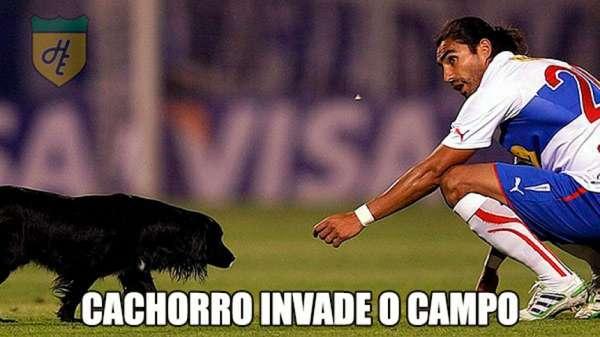 Na Libertadores cachorro invade o campo. E quem não ama cachorros?