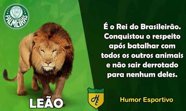 1º) Palmeiras / Leão