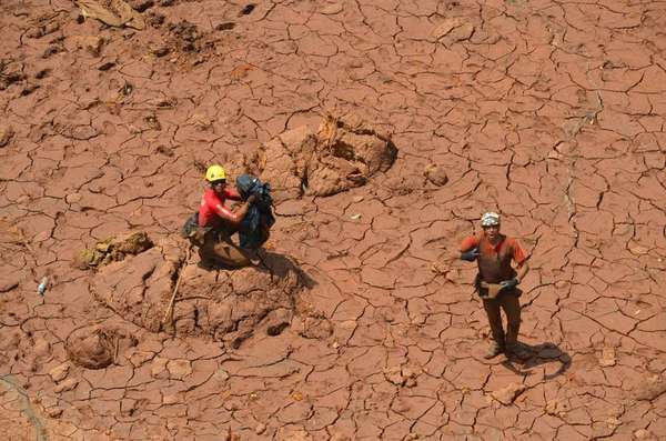 Brumadinho - Bombeiros e pessoas que tiveram contato com a lama serão submetidas a exames periódicos