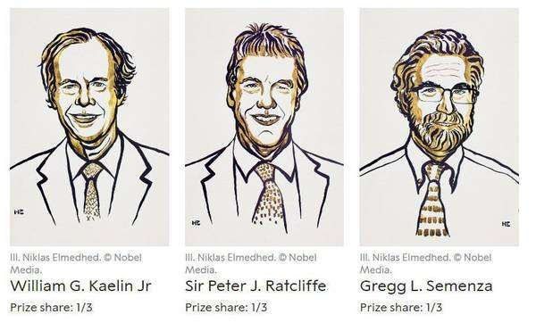 Willian Kailin, Peter Ratcliffe e Gregg Semenza, os vencedores do Nobel de Medicina em 2019